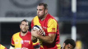 Rugby - Colomiers / Perpignan