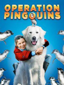 Opération pingouins