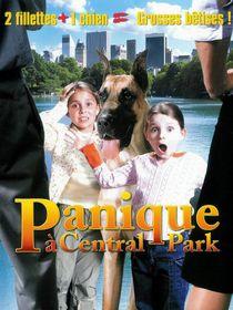 Panique à Central Park