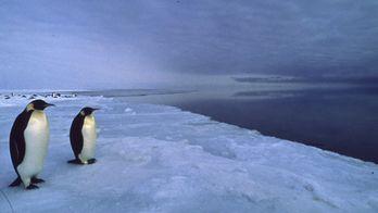 Un monde de glace