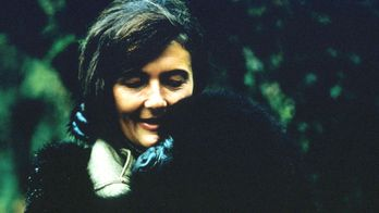 Dian Fossey: Secrets dans la brume