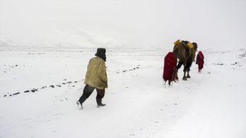 Hiver afghan