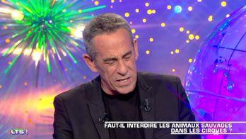 """""""Les cirques avec les animaux c'es"""