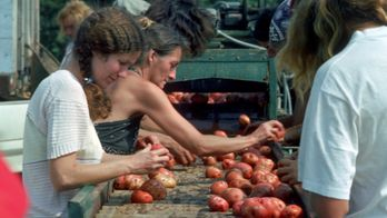 American Commune : un paradis hippie