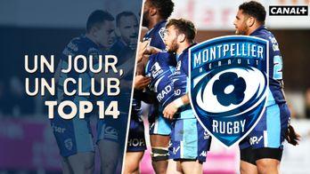 Un jour, un club - Montpellier Hérault Rugby