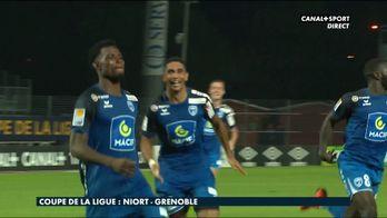 Le résumé de Niort / Grenoble