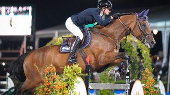 Equitation - Grand Prix