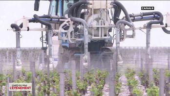 Pesticides : Consultation citoyenne par ordinateurs interposés