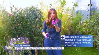 Septembre : on s'occupe de son potager !