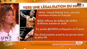 Vers une légalisation du MMA en France