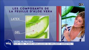 Aloé vera : plante miraculeuse ou argument marketing ?