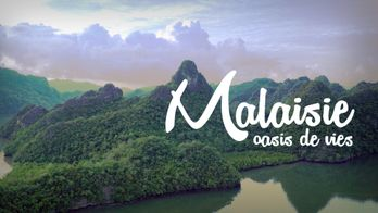Malaisie, oasis de vies