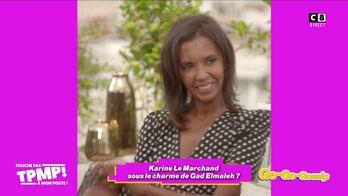 Karine Le Marchand se rapprocherait-elle de Gad Elmaleh ?