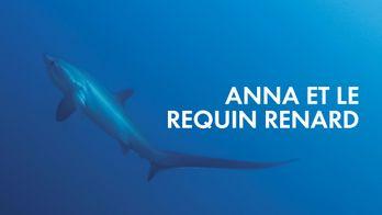 Anna et le requin-renard