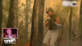 Le top 8 des vidéos qu'il ne fallait pas louper : Un koala sauvé des flammes en Australie