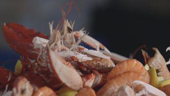 Coquillages et crustacés, la mer sur un plateau