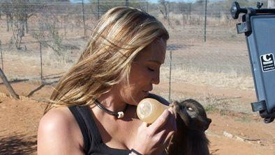 Bébés babouins