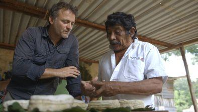 Mexique, les guérisseurs maya