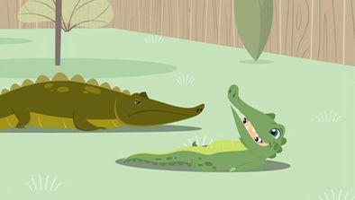 Dans la peau de mon alligator