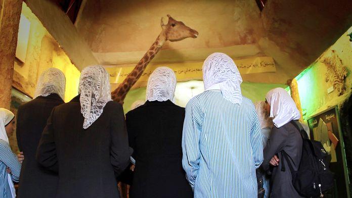 Un zoo en Palestine