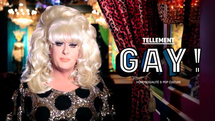 Tellement gay ! Homosexualité et pop culture