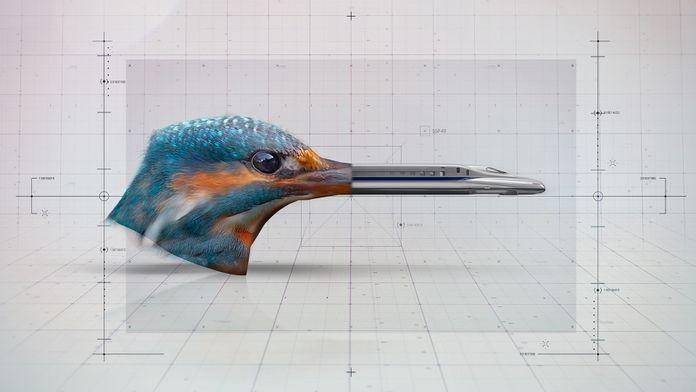 Le futur s'annonce biomimétique...