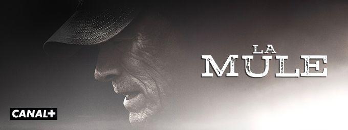 La Mule en octobre sur CANAL+
