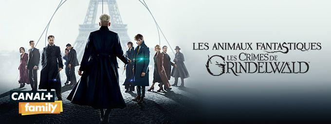 Les animaux fantastiques - Les crimes de Grindelwald en octobre sur CANAL+Family