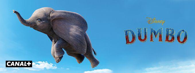 Dumbo en Février sur CANAL+