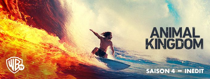 Animal Kingdom - En novembre Sur Warner Bros TV²