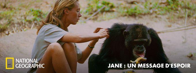 Jane : un message d'espoir - En mai sur National Geographic