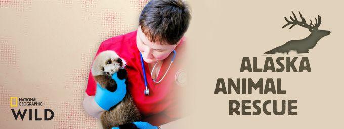 Alaska Animal Rescue - En mai sur Nat Geo Wild