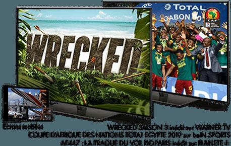 Coupe d'Afrique des Nations Total 2019 en Juin sur beINSPORTS  / Wrecked en Juin sur Warner bros TV / AF447 : La Traque du vol Rio-Paris (PLANETE+)
