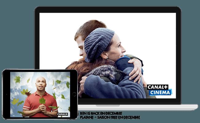 Ben is back - En décembre sur CANAL+CINEMA / Platane Saison Tree - En décembre sur CANAL+