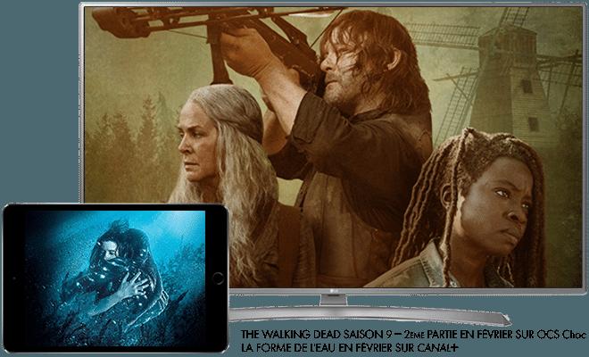 The Walking Dead saison 9, 2eme Partie en Février sur OCS CHOC / La forme de l'eau en Février sur CANAL+