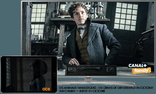Les animaux fantastiques - Les crimes de Grindelwald en octobre sur CANAL+Family / Watchmen - Inédit en octobre sur OCS