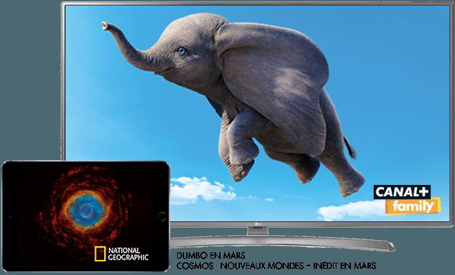 Dumbo - En mars sur CANAL+Family / Cosmos : Nouveaux Mondes - Inédit - En mars sur National Geographic