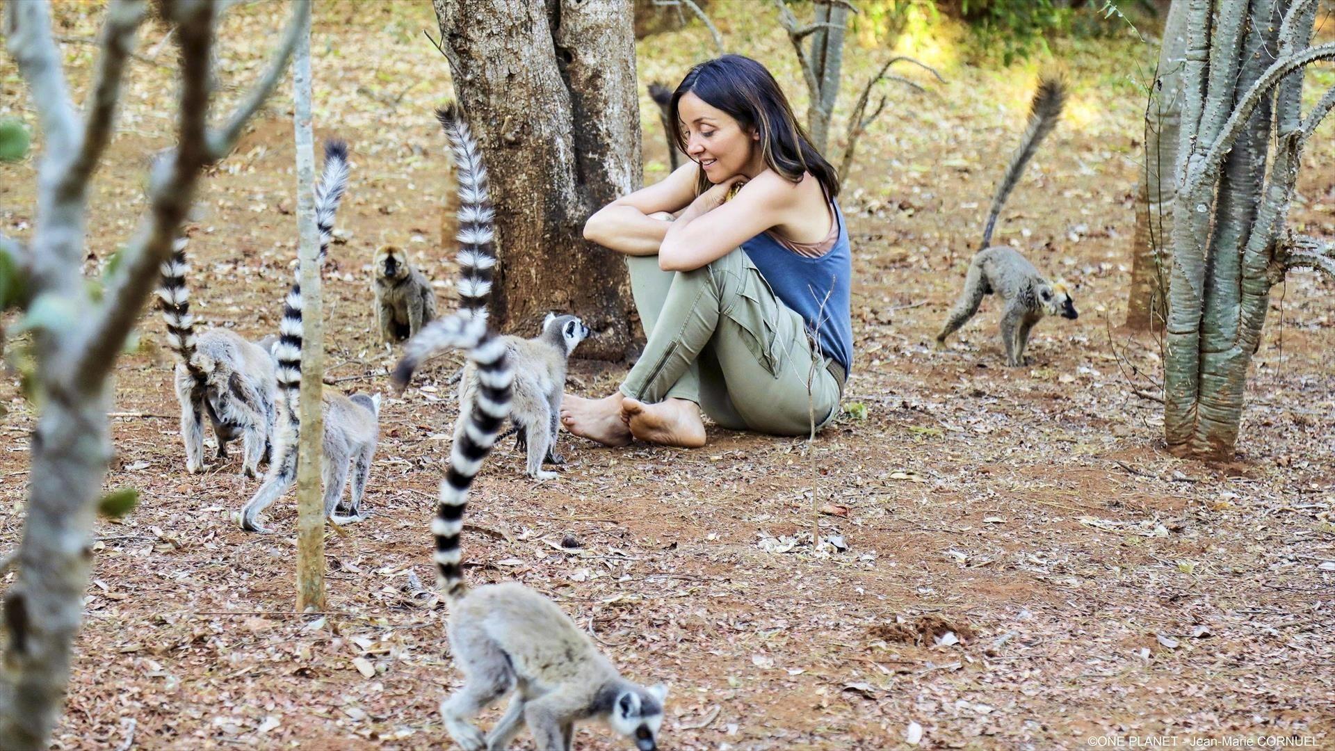 Madagascar : au royaume des lémuriens