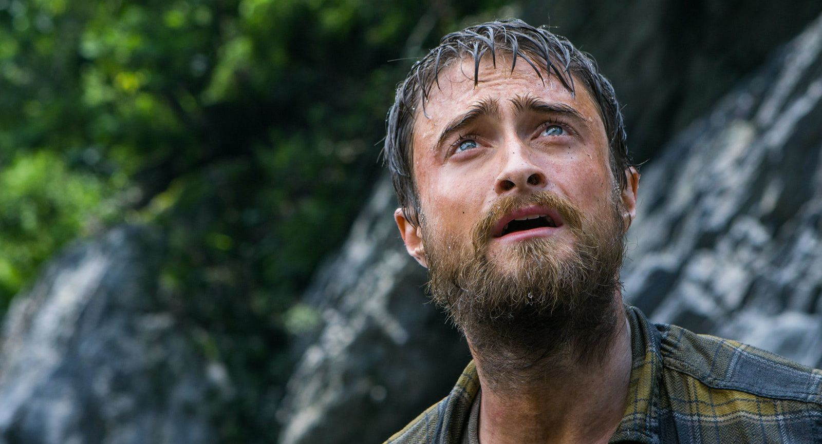 L'ex-Harry Potter est un aventurier dans Jungle