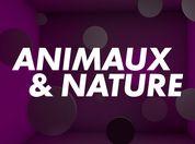 Animaux et Nature