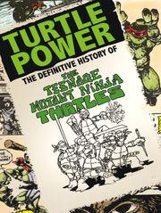 Turtle Power, l'ultime secret des Tortues Ninja