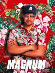 Magnum - Saison 1