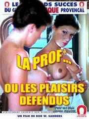 La prof ou les plaisirs défendus