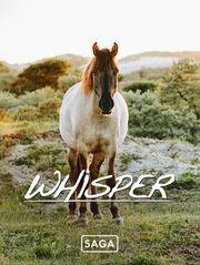 Saga Whisper