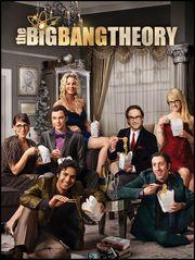 Big Bang Theory - S8