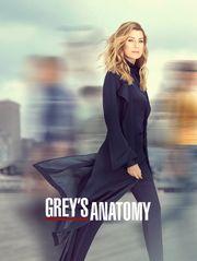 Grey's Anatomy S16 - S16