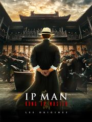 Ip Man : Kung Fu Master - Les origines