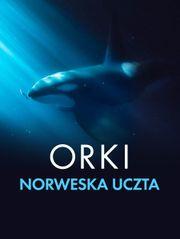 Orki. Norweska uczta