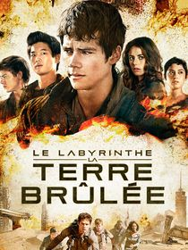 Le labyrinthe : la terre brûlée