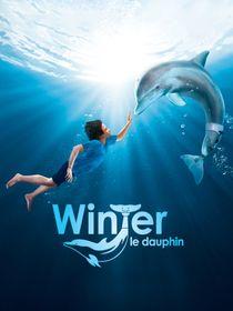 L'incroyable histoire de Winter le dauphin